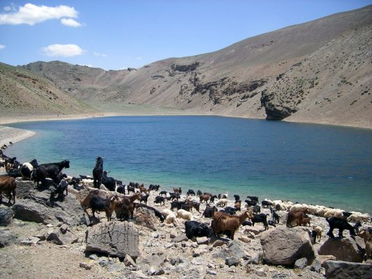the best Lakes in Morocco- Tamda