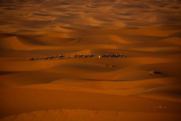Sahara desert Of Morocco/ Visit Morocco