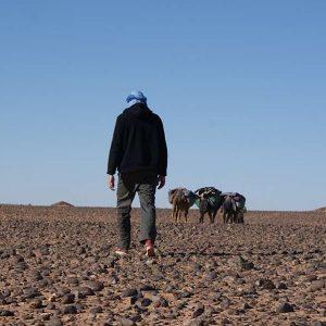 chegaga trekking