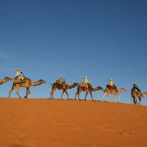 Day Excursions From Marrakech