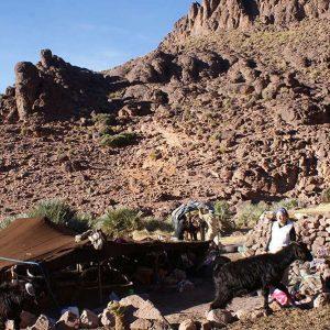 Morocco Nomads Travel