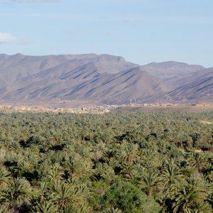 Draa valley - Morocco tour